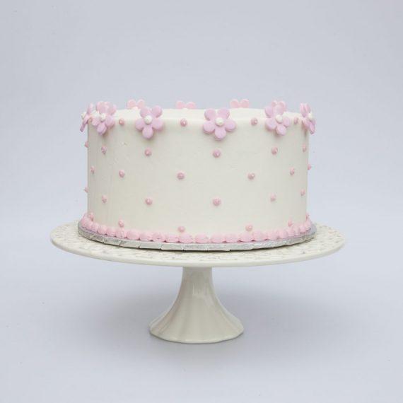 cake_std_jane